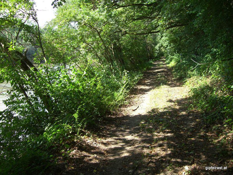 Der Weg bei Mureck