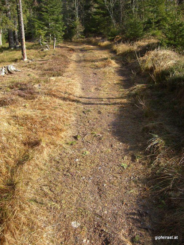 Weg vom Alpl Richtung Hauereck