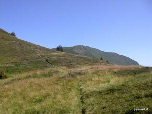 Am Enzianboden, im Hintergrund der Gipfel
