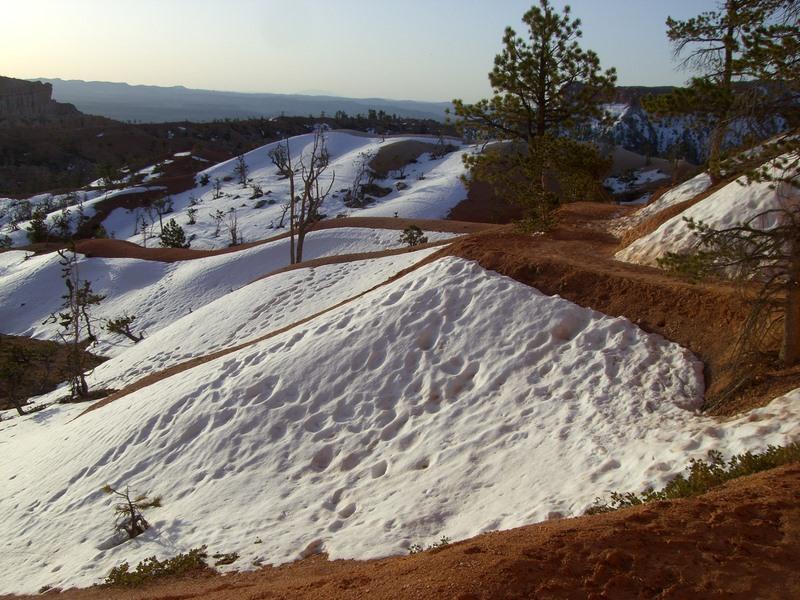 Der Schnee sorgte für nette Kontraste