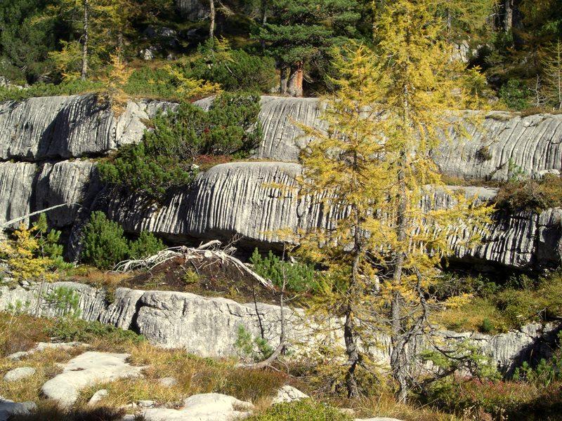 Der Fels nimmt hier seltsame Formen an