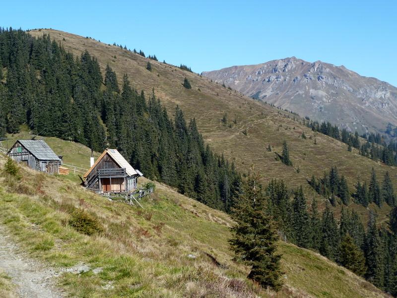 ...und ab der Graskogelhütte almiger