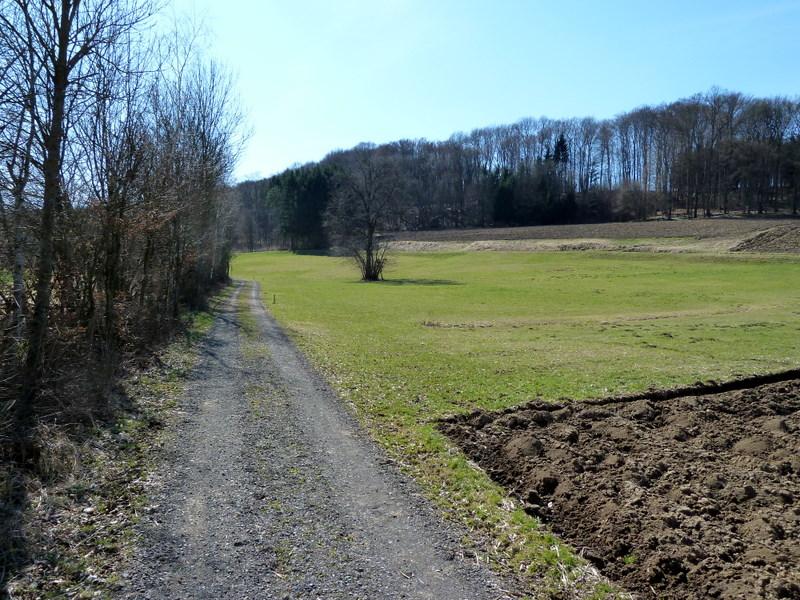 Das Foto repräsentiert ca. 10 km des Weges entlang des Grenzbachs