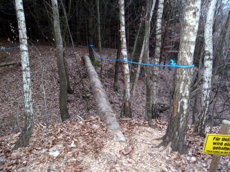 Kleine Klettersteigeinlage - für Unfälle wird klarerweise nicht gehaftet!
