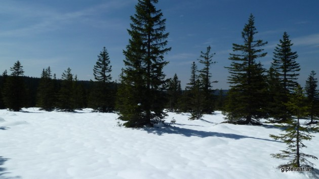 Winterlandschaft (2)
