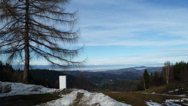 Aussicht ins steirische Weinland