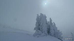 Nebel, Sonne und Winter