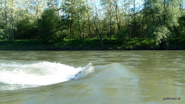 Hindernis im Wasser