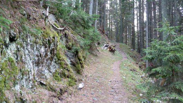 Bereits im Wald