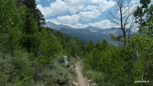 Descending to Bear Creek