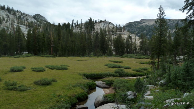 Meadow below Silver Pass
