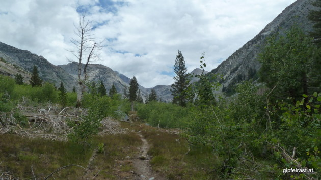 Hiking up Palisade Creek