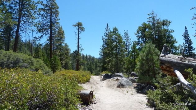 Back on the John Muir Trail