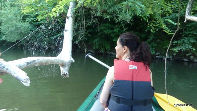 Spinnenetz am Wasser