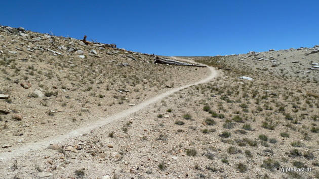 Hiking up to Bighorn Plateau