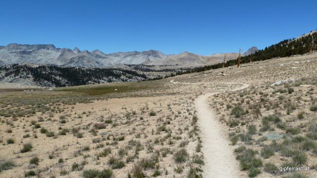 On Bighorn Plateau