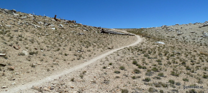 JMT Day 17: Crossing Forester Pass (4009m)