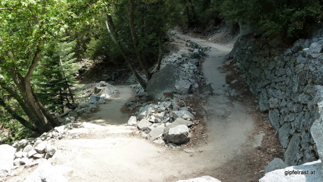 I will soon see more of these on the trail: switchbacks