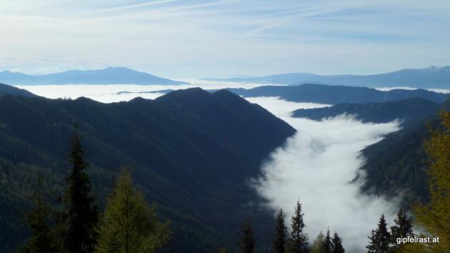 Der Nebel liegt im Ingeringgraben