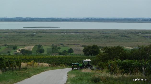 Ausblick auf den Neusiedler See