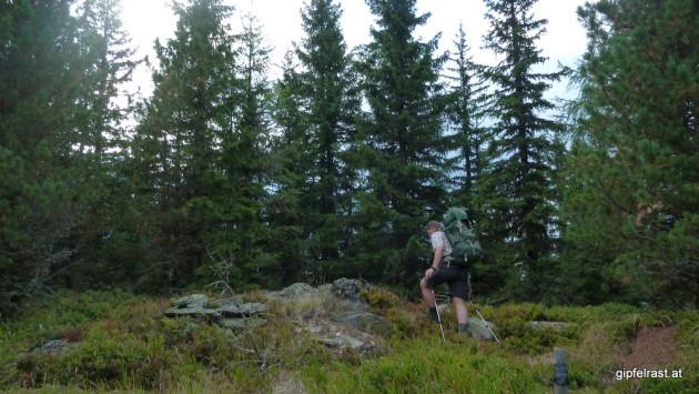 Am Gipfel des Karlsberger Ecks