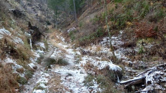 Hinauf geht's durch den kalten und winterlichen Königgraben
