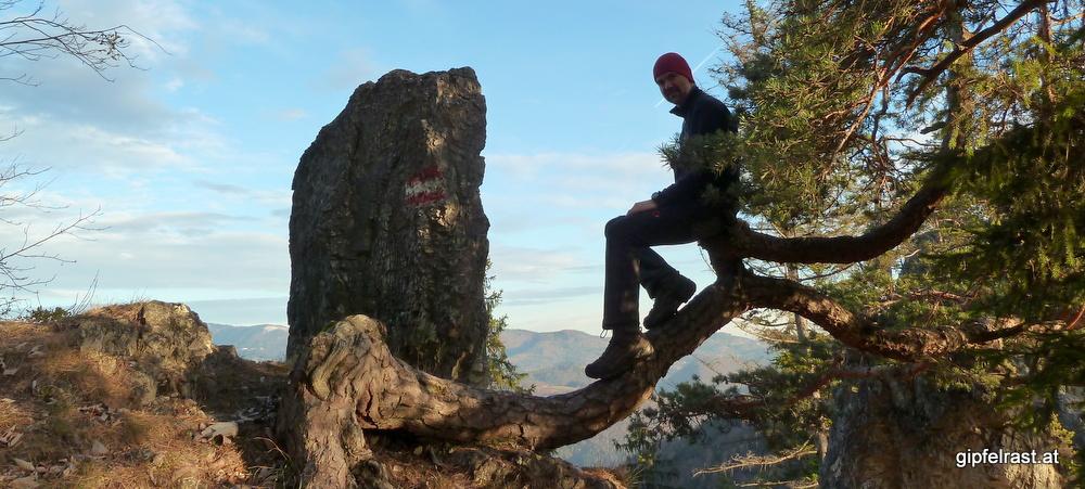 Tipp: Königgraben, Bärenhöhle & Gamskogel