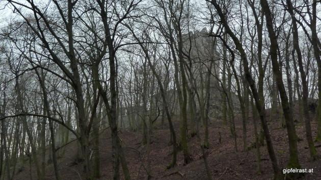 Ruine Pottenstein