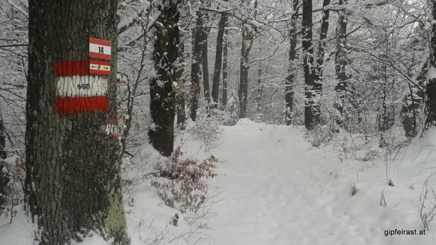 Durch Wälder