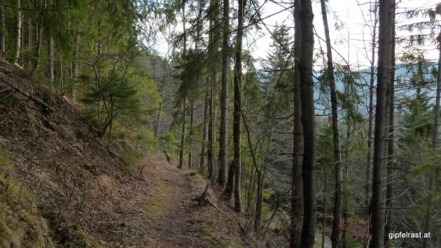 Der Abstieg nach Übelbach steht dem bisherigen Weg um nichts nach