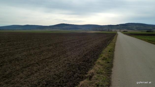 Haugsdorf im Rücken marschiere ich auf den Buchberg (linker Gipfel) zu