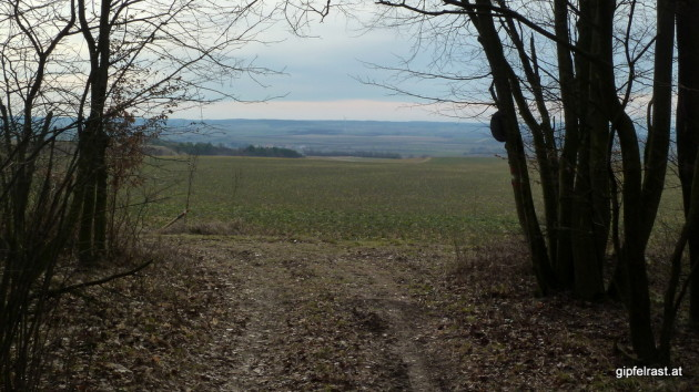 Wald- und Feldwege sind heute der bevorzugte Untergrund