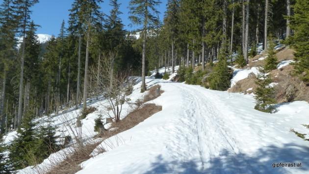 Am Weg zur Bärentalhütte