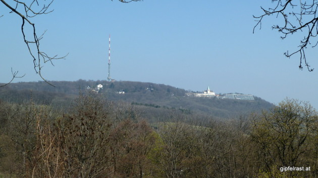Blick zurück zum Kahlenberg