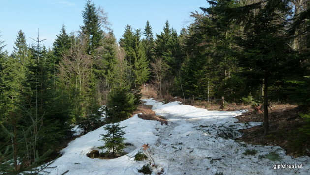 Ein überraschender Wintereinbruch