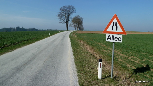 """Allee"""