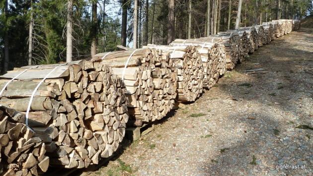Hier war ein weiterer ordnungsliebender Holzsammler am Werk