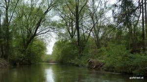 Der Weissenegger Mühlkanal bei Wildon