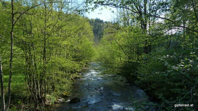 Hier verlässt die Schwarze Sulm das Naturschutzgebiet