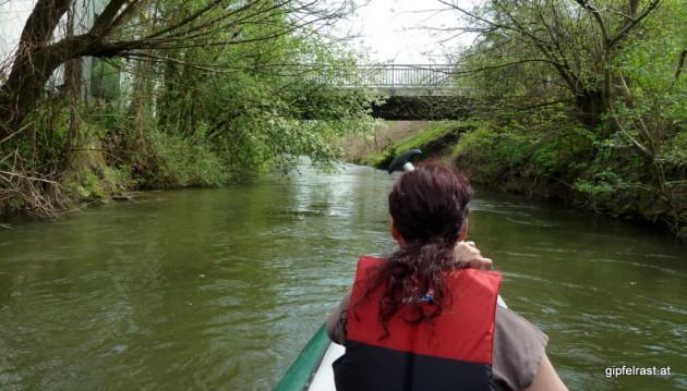 Die Brücke bei Wildon
