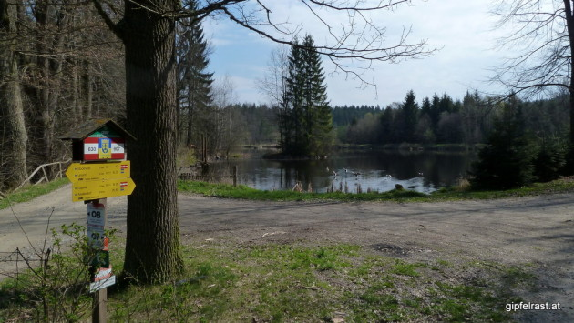 Wegkreuzung beim Forsthaus Ludwigsthal