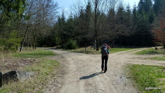 Wegteilung beim Hubertuskreuz