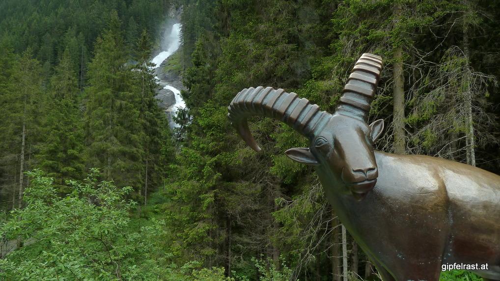 Der eherne Steinbock bewacht die Wasserfälle