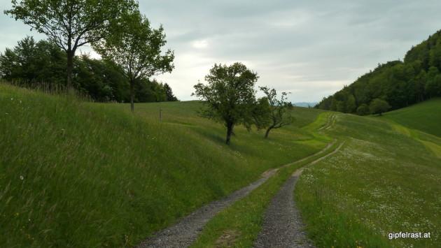Feldweg zum Verschnaufen