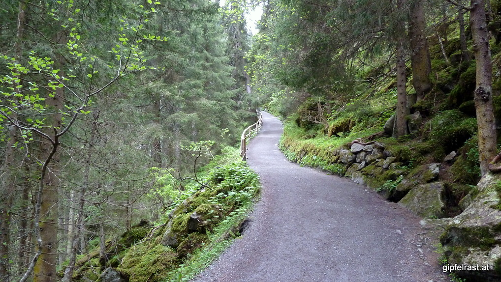Der Weg hinauf: gut ausgebaut, aber steil.