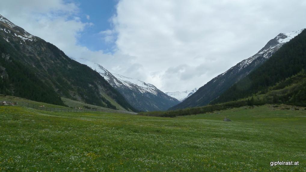 Blick hinauf ins Tal, weiter gehen wir heute nicht