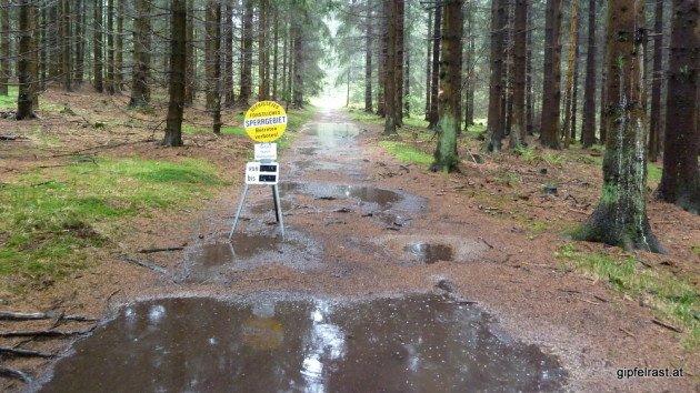 Forstliches Sperrgebiet - wegen Überschwemmung?