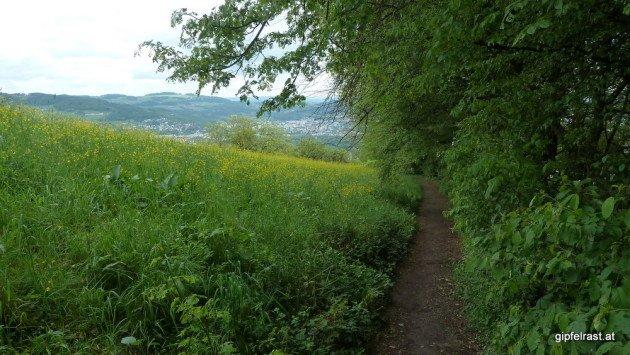 Der steile Abstieg vom Pöstlingberg