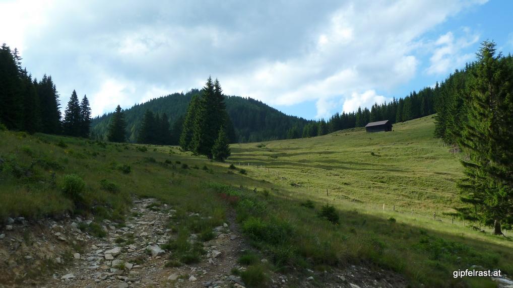 Es beginnt mit wunderschönen Almwiesen