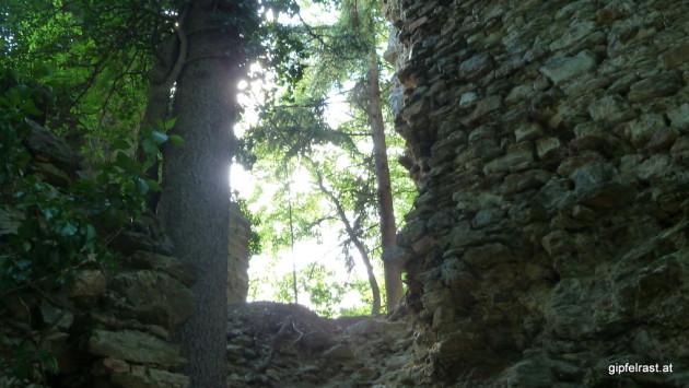 Bei der Ruine Schmirnberg